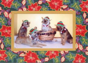 Brentwood Borders Christmas Elves