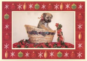 Brentwood Borders Christmas Pup